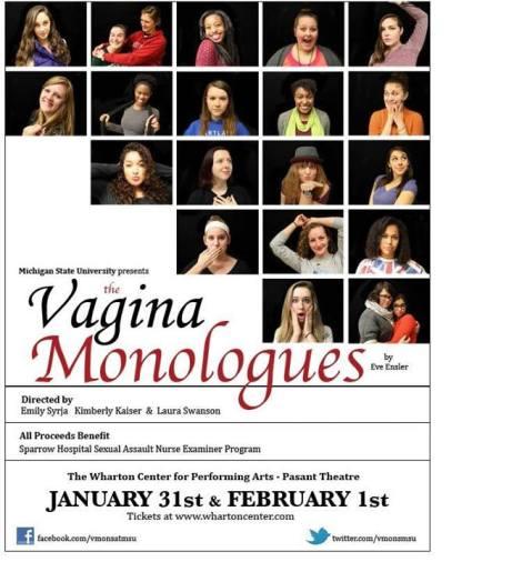 Vmons Flyer 2014